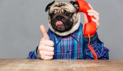引越し侍の評判・口コミの総まとめ!しつこい電話営業の対処法とは?