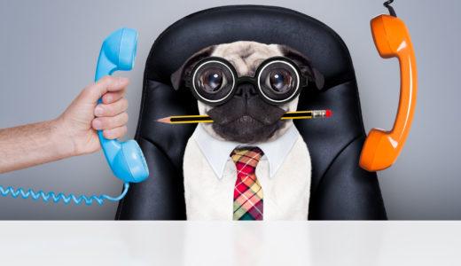 【サカイ引越センターの電話】番号一覧と電話対応の口コミ、電話見積もり絶対ダメな理由